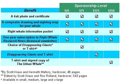 sponsor packages2